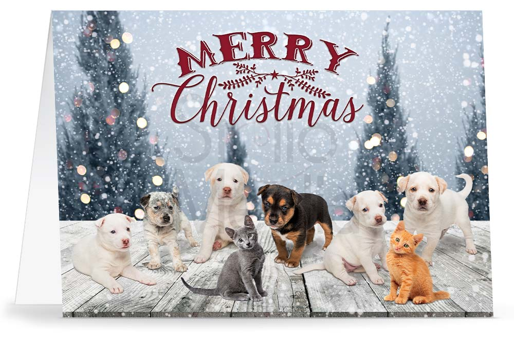 Christmas greeting card with six puppies and two kittens