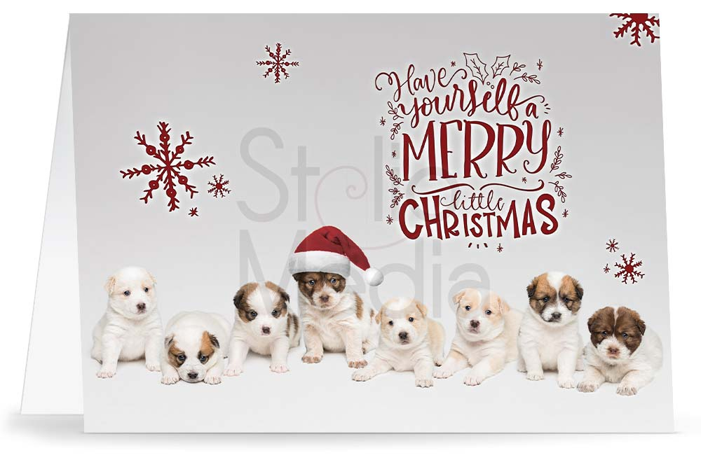 Christmas greeting card with eight puppies on light gray background